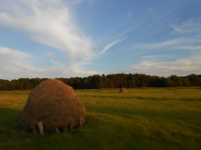 Traditional haystack in the salt marshes of Newbury, Massachusetts