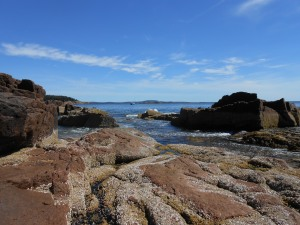 Ocean view, near Thunder Hole, Acadia, Maine