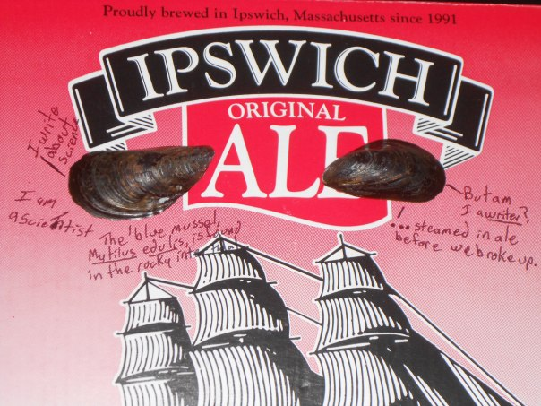 Am I a writer - Ipswich Ale box