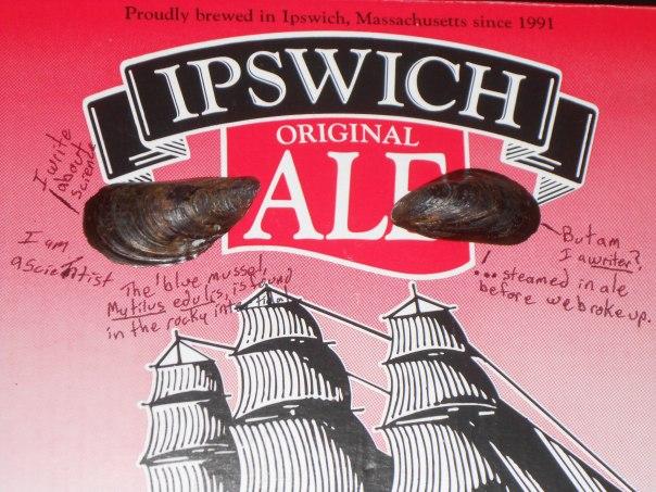 Am I a writer - Ipswich Ale box