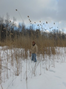 John stands among the tall Phragmites.