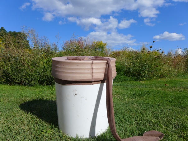 The scientific term is:  orthopteran retention vessel. Or a bucket with pantyhose on its head.