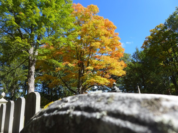 Cemetery colors, Oak Hill Cemetery
