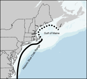 Solid line: historic blue crab distribution. Dashed line: potential new range extension.