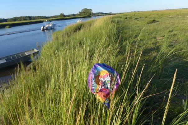 Balloon on marsh, Ipswich, Massachusetts