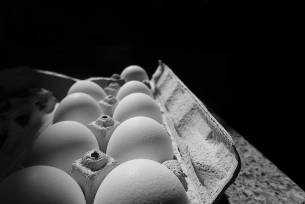 Arty eggs (4)